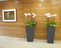 home interior plants home interior plant design