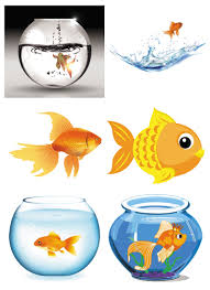 fish vector graphics blog