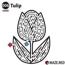 maze red difficult maze of the tulip