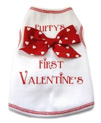 s day clothes valentines day dog shirt