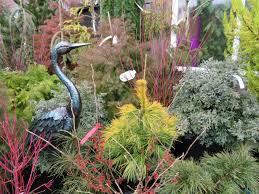 portland native plants chickadee gardens a winter visit to portland nursery