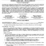business consultant resume example business management objectives