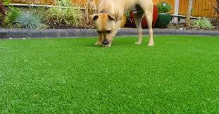 astroturf artificial lawn information and synthetic grass products