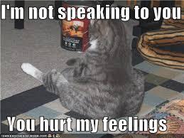 Hurt Feelings Meme - is it hurt feelings way of cats blog