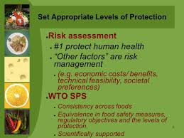equivalence cuisine module 4 risk management and developing a food standard ppt