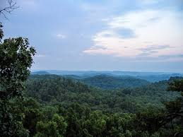 Kentucky Landscapes images Landscape and forest in daniel boone national forest in kentucky jpg