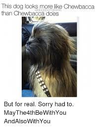 Chewbacca Memes - 25 best memes about chewbacca chewbacca memes