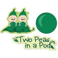 2 peas in a pod two peas in a pod baby shower theme bigdotofhappiness