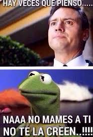 Funny Memes Spanish - meme de la rana rene memes chidos pinterest memes humour and