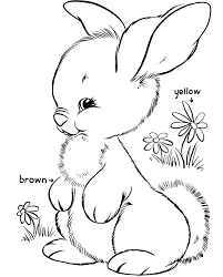 bunnies in flower garden coloring pages for kids 4n printable
