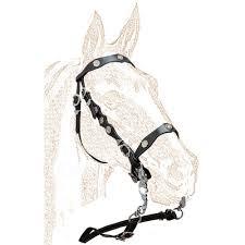 Horse Bridle Decorations Portuguese Single Bridle With Metal Decorations