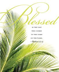 palms for palm sunday palm sunday all this week i pray we will take time each