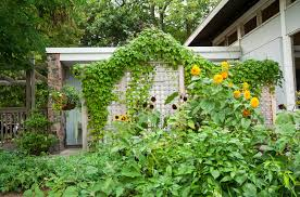 Trellis As Privacy Screen 21 Inspired Privacy Screens For Residential Neighborhoods