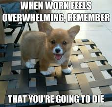 Overwhelmed Memes - when work feels overwhelming remember that you re going to die