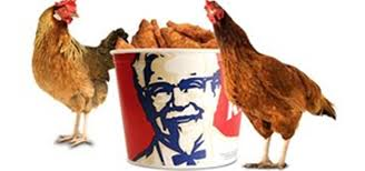 how to replicate colonel sanders kentucky fried chicken secret