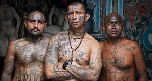 made in america heavy tattooed gang members control full prison in