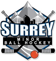 tykes surrey minor ball hockey association website by ramp
