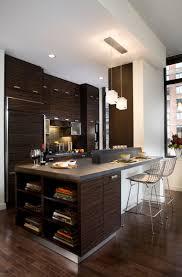 Condominium Kitchen Design by Mark Hayes Aia