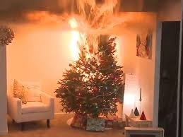 Real Christmas Trees Manchester Why You Should Water Your Christmas Tree The Independent