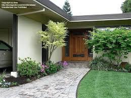door design terrific green round modern soil front yard plants