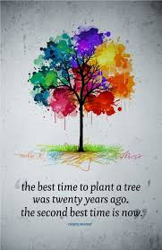 canvas quote the best time to plant a tree was twenty years