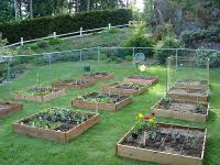 Gardening Layout What Is Square Foot Gardening Mel Bartholomew Creator Of