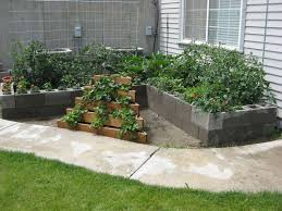 Vegetable Garden Bed Design by Best 20 Raised Garden Beds Cinder Blocks Ideas On Pinterest Bed