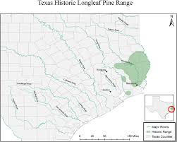 Colorado River Texas Map historic range map texas longleaf pine taskforce
