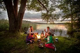light and go bonfire light n go bonfire log essay group