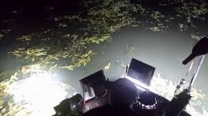 120v led flood lights super high intensity led light bar 54 watts oznium