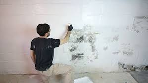 waterproofing basement walls with drylok paint 5 steps with