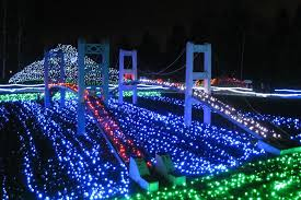 best price on christmas lights best christmas lights in seattle tacoma and bellevue
