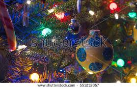 at big small tree fotografie snímky pro členy zdarma a vektory