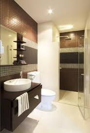 Contemporary Small Bathroom Ideas by 74 Best Bathroom Images On Pinterest Bathroom Ideas Master