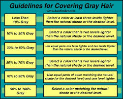 camouflaging gray hair with highlights haircolor to hide gray hair the use of haircolor that matches