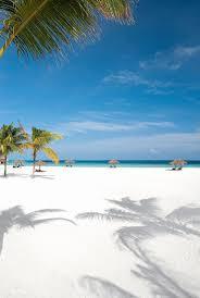 where is the black sand beach best 25 white sand beach ideas on pinterest beautiful beaches