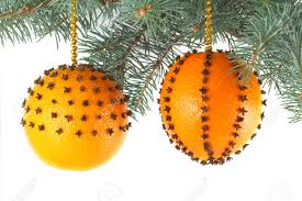 orange decorations rainforest islands ferry