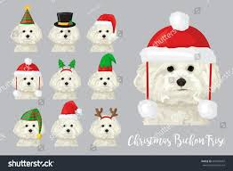christmas festive collection cute bichon frise stock vector