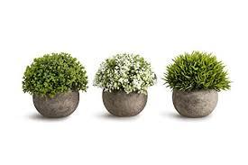 mini plants opps artificial plastic mini plants unique fake fresh green grass