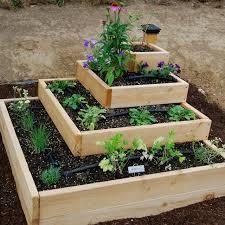 kitchen gardens design plant the gardens and layout by the kitchen garden design ideas