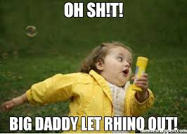 Big Daddy Meme - oh sh t big daddy let rhino out meme chubby bubbles girl