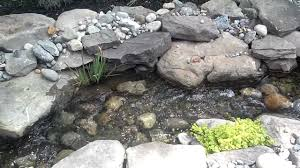 Aquascape Biofalls Pond Stream And Water Fall Remodel Wet Land Filter Biofall By
