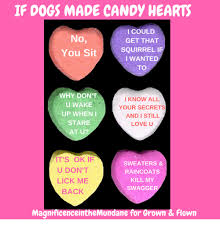 s candy hearts if dogs made candy hearts no you sit i could get that squirrel if