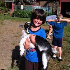 Craigslist Rentals Kauai by 10 Fun Things To Do In Kauai With Kids