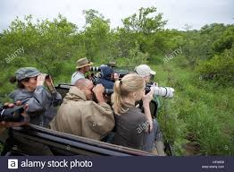 hatari jeep kruger national park safari 4wd jeep viewing nature photographers