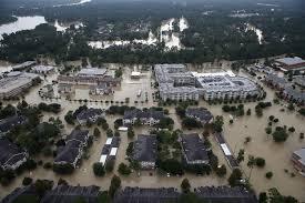 Lumber Liquidators News Hurricane Irma And Harvey Cause Lumber Liquidators Shares To Rise