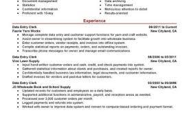 free sample resume for clerk