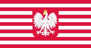 polish american flag designs album on imgur