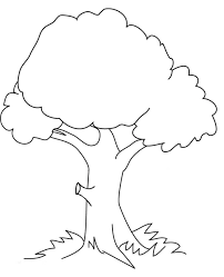 christmas tree coloring sheets free tags tree coloring sheet