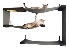 Trixie Cat Hammock by Amazon Com Catastrophicreations Fabric Cat Maze Multiple Level